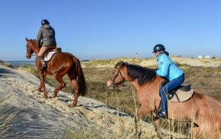 Balade à cheval en Baie d'Authie & Atelier Poney