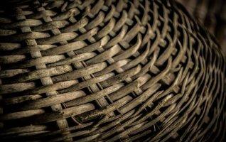 Atelier du Musée : « De la plante au panier, la vannerie »