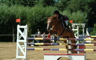 16 ème concours de sauts d'obstacles amateur et professionnel