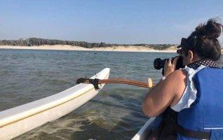 Balade en Pirogue ou Kayak sur la Baie d'Authie
