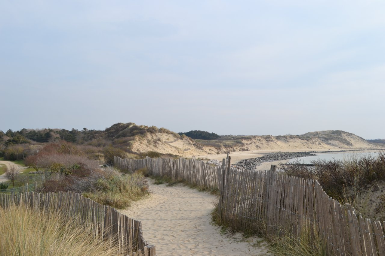 sentier dunaire